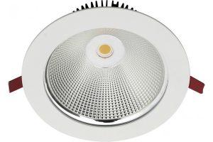 Gemini recessed LED downlight