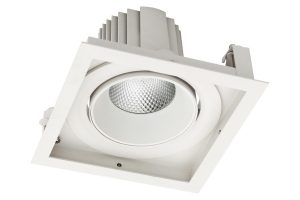 Gimbal recessed LED adjustable downlight