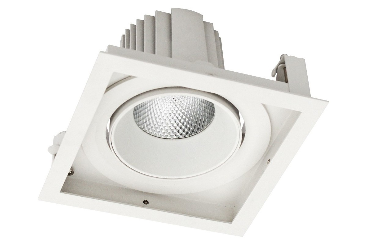Gimbal 1 Recessed LED Adjustable Downlight