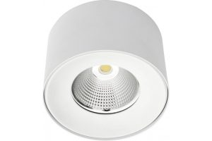 Cay surface downlight